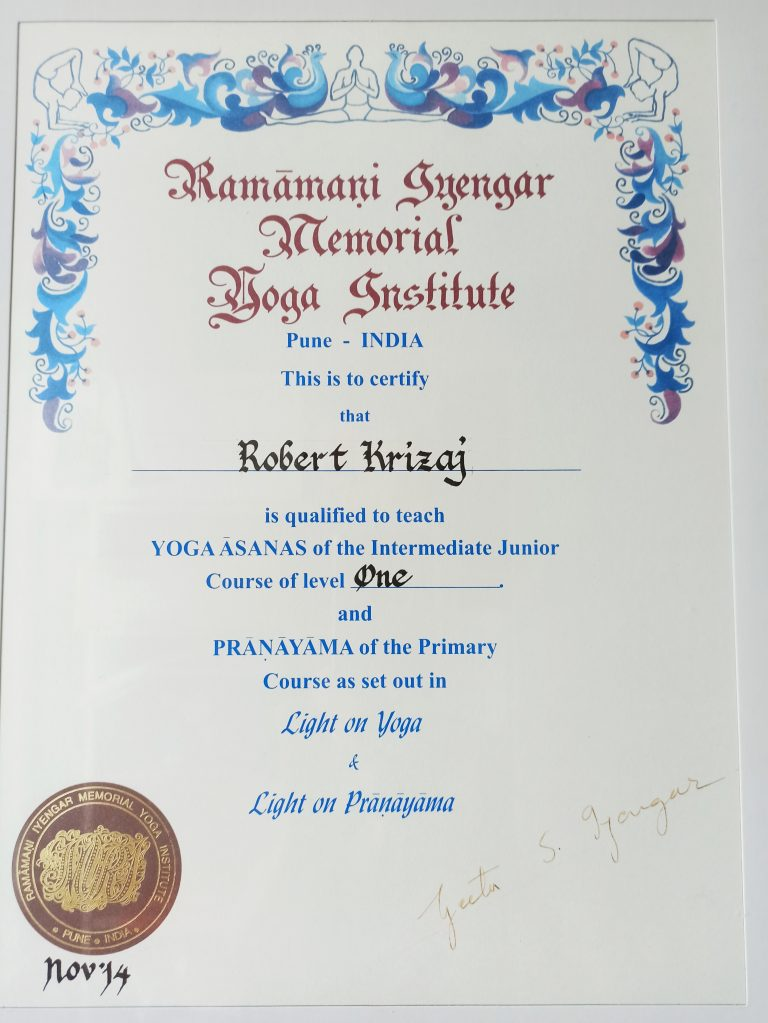 RIMYI diploma